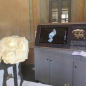 Archéologie augmentée – Valorisation numérique 3D d'un fragment statuaire romain